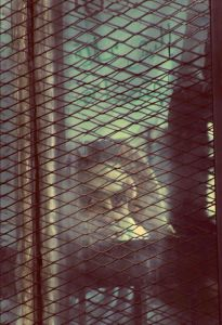 Shawkan in courtroom cage, April 23, 2016